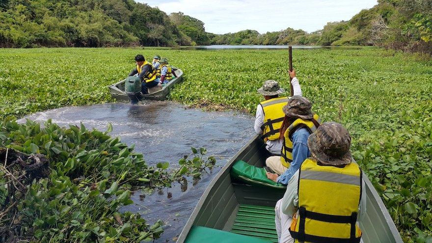 Bolivien Amazonas Reina de Enin Ibare Mamore