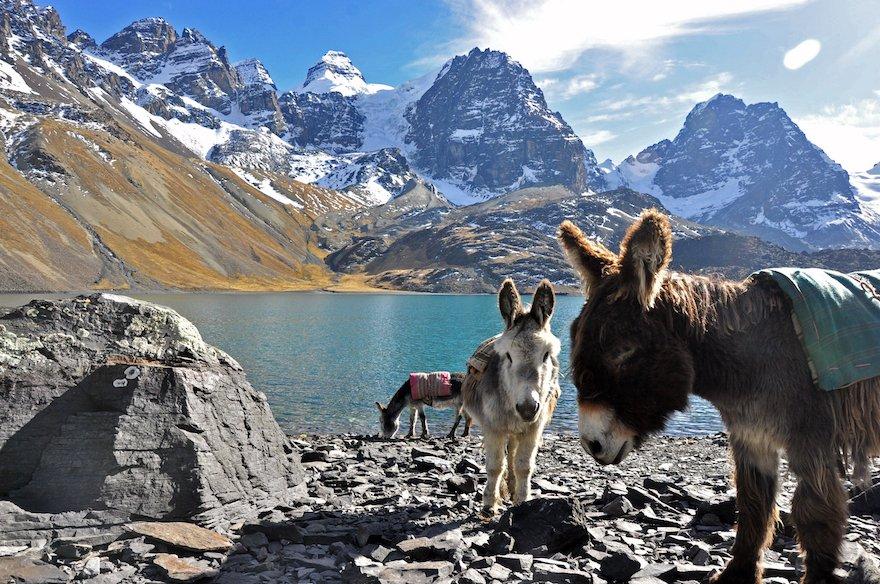 Bolivien Cordillera Real Königskordillere Condoriri Trek