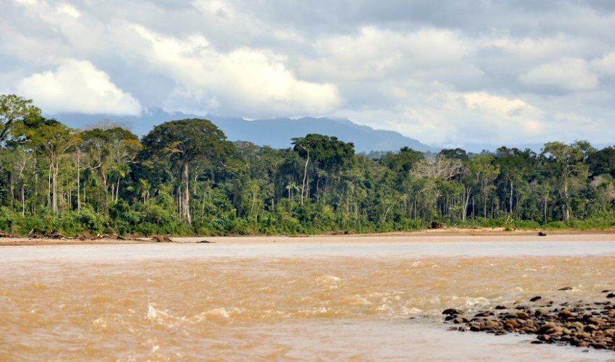 Bolivien Amazonas Madidi Nationalpark