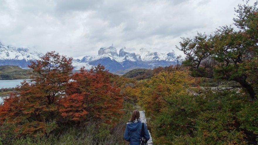 lago pehoé nationalpark torres del paine chile patagonien