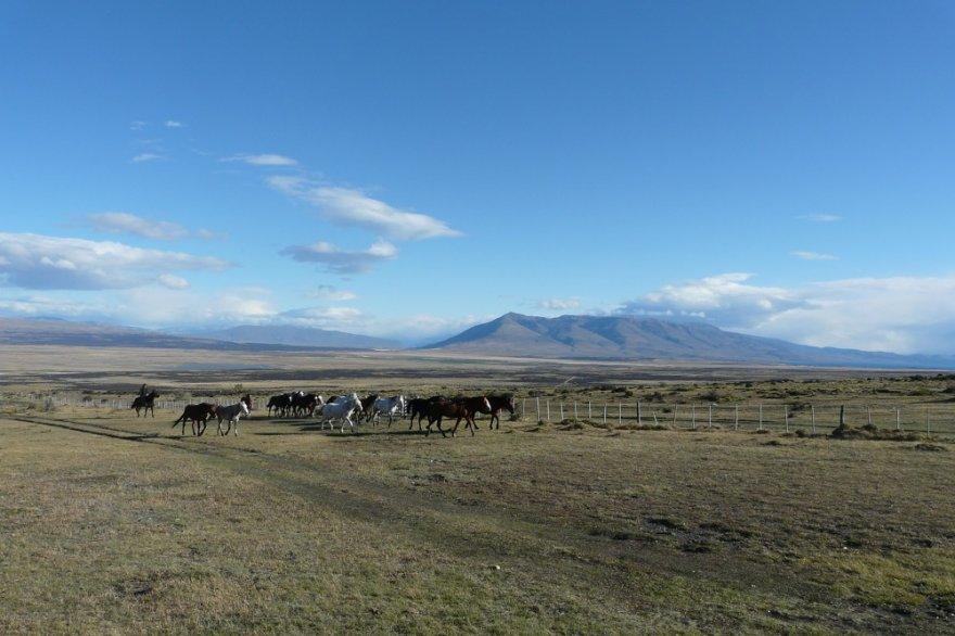 Estancia patagonien chile torres del paine nationalpark