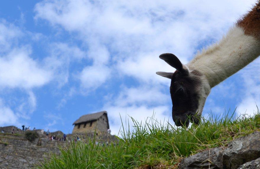 Peru Inka Trail Machu Picchu