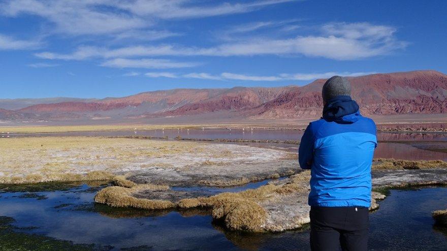 Laguna Carachi Pampa Puna Anden Argentinien